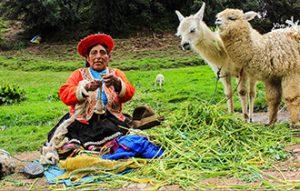 Peru8